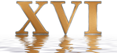 Roman numeral XVI, sedecim, 16, sixteen,, reflected on the water surface, isolated on  white, 3d render