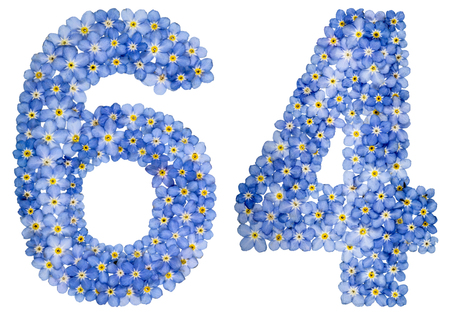 computation: Arabic numeral 64, sixty four, from blue forget-me-not flowers, isolated on white background