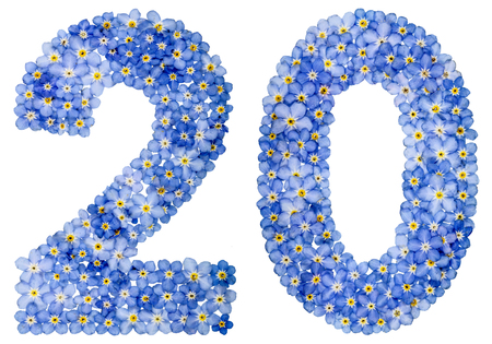 computation: Arabic numeral 20, twenty, from blue forget-me-not flowers, isolated on white background