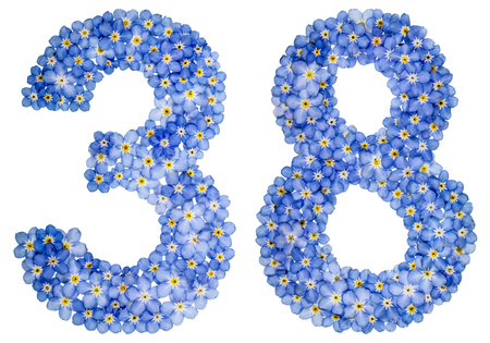 Arabic numeral 38, thirty eight, from blue forget-me-not flowers, isolated on white background
