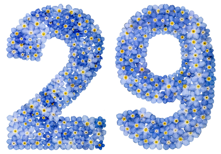 Arabic numeral 29, twenty nine, from blue forget-me-not flowers, isolated on white background Stock Photo