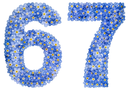 Arabic numeral 67, sixty seven, from blue forget-me-not flowers, isolated on white background