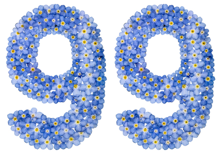 computation: Arabic numeral 99, ninety nine, from blue forget-me-not flowers, isolated on white background Stock Photo