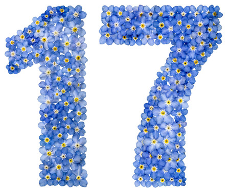Arabic numeral 17, seventeen, from blue forget-me-not flowers, isolated on white background Stock Photo