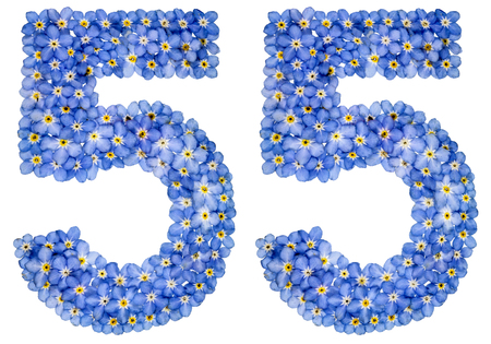Arabic numeral 55, fifty five, from blue forget-me-not flowers, isolated on white background Stock Photo
