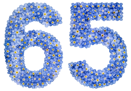 Arabic numeral 65, sixty five, from blue forget-me-not flowers, isolated on white background