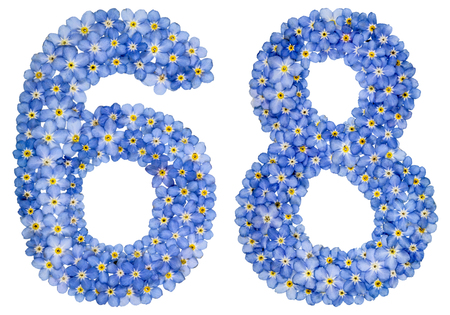 Arabic numeral 68, sixty eight, from blue forget-me-not flowers, isolated on white background Stock Photo