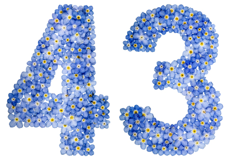 Arabic numeral 43, forty three, from blue forget-me-not flowers, isolated on white background Stock Photo