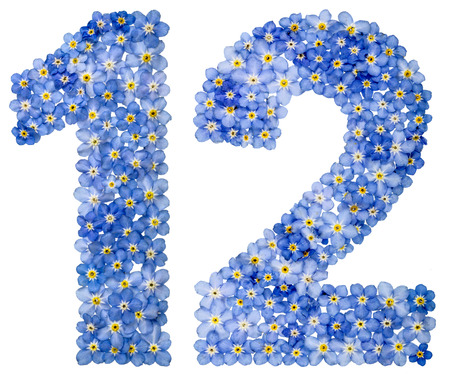 Arabic numeral 12, twelve, from blue forget-me-not flowers, isolated on white background
