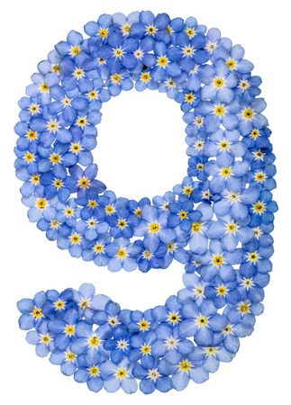 computation: Arabic numeral 9, nine, from blue forget-me-not flowers, isolated on white background Stock Photo