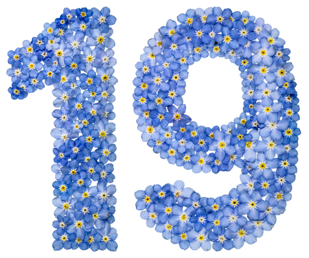 computation: Arabic numeral 19, nineteen, from blue forget-me-not flowers, isolated on white background Stock Photo