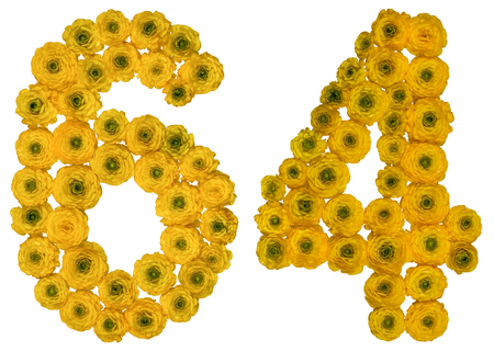 Arabic numeral 64, sixty four, from yellow flowers of buttercup, isolated on white background