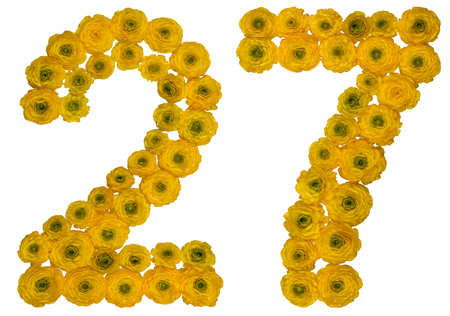 ordinal: Arabic numeral 27, twenty seven, from yellow flowers of buttercup, isolated on white background Stock Photo
