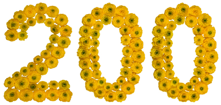 computation: Arabic numeral 200, two hundred, from yellow flowers of buttercup, isolated on white background Stock Photo