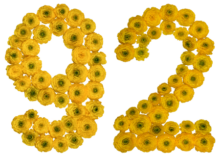 ordinal: Arabic numeral 92, ninety two, from yellow flowers of buttercup, isolated on white background