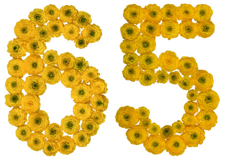 ordinal: Arabic numeral 65, sixty five, from yellow flowers of buttercup, isolated on white background Stock Photo