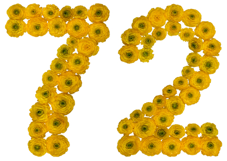 computation: Arabic numeral 72, seventy two, from yellow flowers of buttercup, isolated on white background Stock Photo