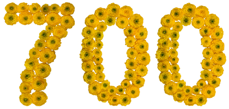 computation: Arabic numeral 700, seven hundred, from yellow flowers of buttercup, isolated on white background Stock Photo