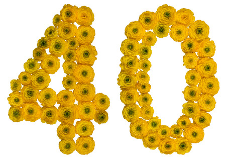 ordinal: Arabic numeral 40, forty, from yellow flowers of buttercup, isolated on white background