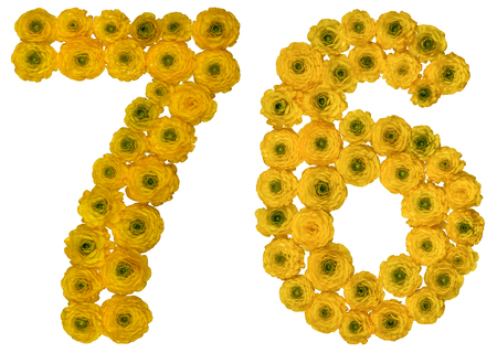 ordinal: Arabic numeral 76, seventy six, from yellow flowers of buttercup, isolated on white background