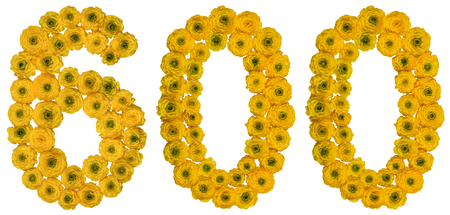 Arabic numeral 600, six hundred, from yellow flowers of buttercup, isolated on white background