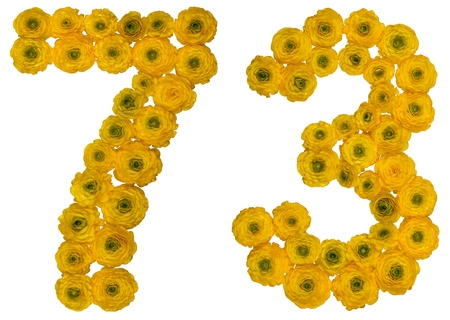 ordinal: Arabic numeral 73, seventy three, from yellow flowers of buttercup, isolated on white background