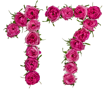 computation: Arabic numeral 17, seventeen, from red flowers of rose, isolated on white background