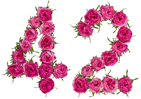 Arabic numeral 42, forty two, from red flowers of rose, isolated on white background