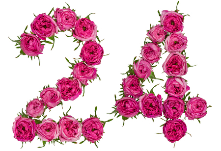 Arabic numeral 24, twenty four, from red flowers of rose, isolated on white background Stock Photo