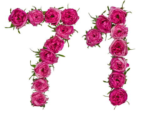 computation: Arabic numeral 71, seventy one, from red flowers of rose, isolated on white background