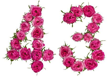 Arabic numeral 43, forty three, from red flowers of rose, isolated on white background
