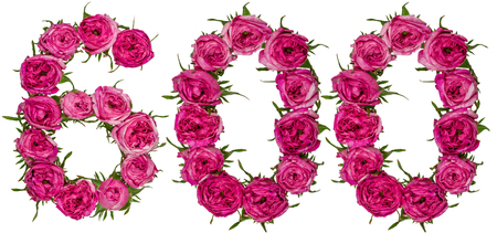 computation: Arabic numeral 600, six hundred, from red flowers of rose, isolated on white background