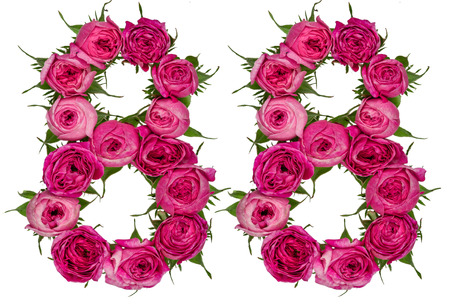 Arabic numeral 88, eighty eight, from red flowers of rose, isolated on white background