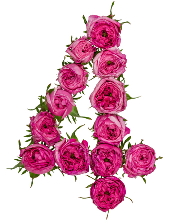 Arabic numeral 4, four, from red flowers of rose, isolated on white background Stock Photo