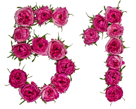 computation: Arabic numeral 51, fifty one, from red flowers of rose, isolated on white background