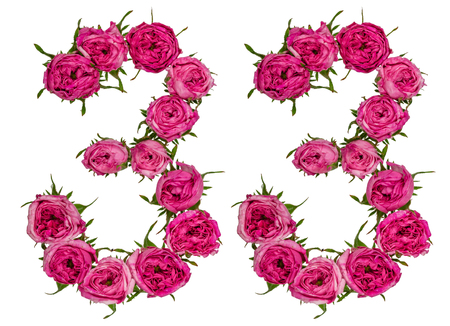 ordinal: Arabic numeral 33, thirty three, from red flowers of rose, isolated on white background