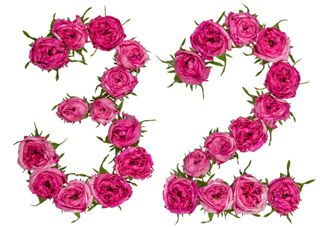 computation: Arabic numeral 32, thirty two, from red flowers of rose, isolated on white background