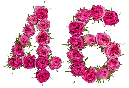 ordinal: Arabic numeral 46, forty six, from red flowers of rose, isolated on white background Stock Photo