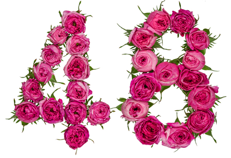 computation: Arabic numeral 48, forty eight, from red flowers of rose, isolated on white background