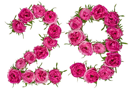 Arabic numeral 29, twenty nine, from red flowers of rose, isolated on white background
