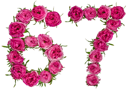 Arabic numeral 67, sixty seven, from red flowers of rose, isolated on white background