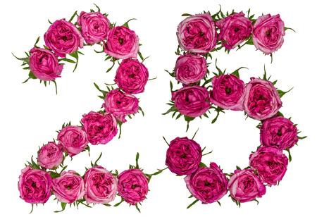 白い背景にアラビア数字 25、25、ローズの赤い花から分離 写真素材