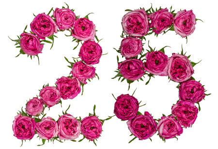 Arabic numeral 25, twenty five, from red flowers of rose, isolated on white background Stock Photo - 79669362