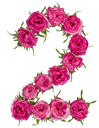 computation: Arabic numeral 2, two, from red flowers of rose, isolated on white background Stock Photo