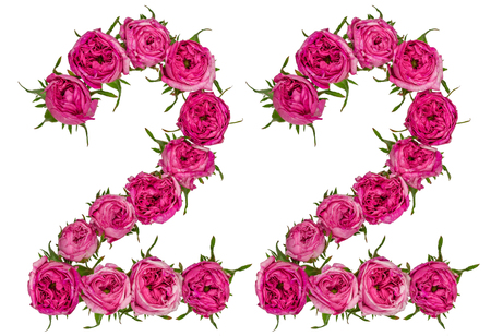Arabic numeral 22, twenty two, from red flowers of rose, isolated on white background