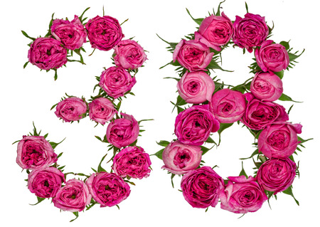 computation: Arabic numeral 38, thirty eight, from red flowers of rose, isolated on white background Stock Photo