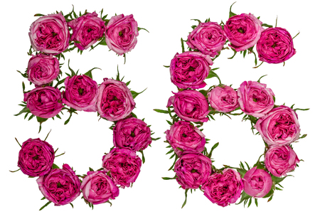ordinal: Arabic numeral 56, fifty six, from red flowers of rose, isolated on white background