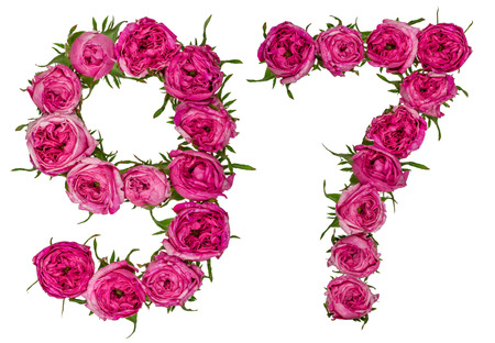 ordinal: Arabic numeral 97, ninety seven, from red flowers of rose, isolated on white background