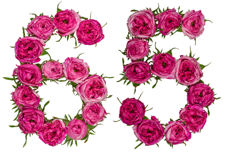 Arabic numeral 65, sixty five, from red flowers of rose, isolated on white background