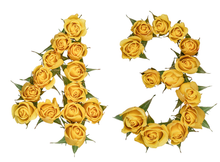 Arabic numeral 43, forty three, from yellow flowers of rose, isolated on white background